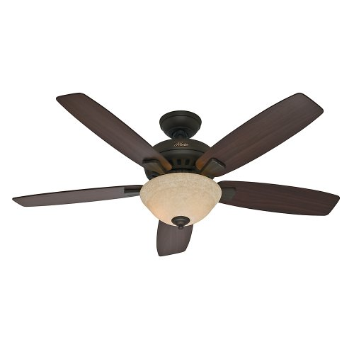 Hunter Fan Company Hunter 53176 Transitional 52 Ceiling Fan from Banyan Collection Dark Finish, inch, New Bronze