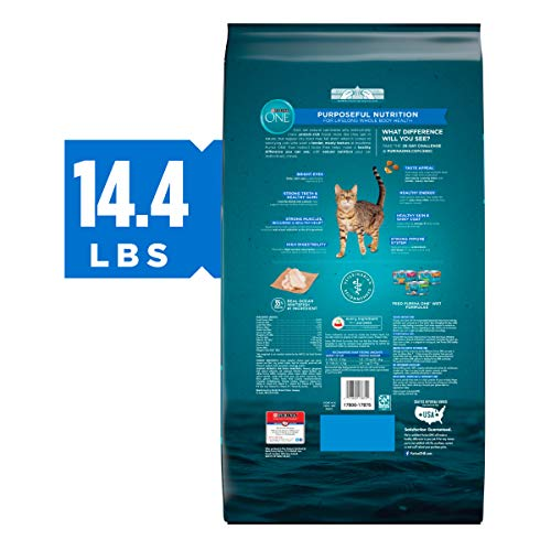 Purina ONE True Instinct Grain Free High Protein, Natural Formula Adult Dry and Wet Cat Food 3