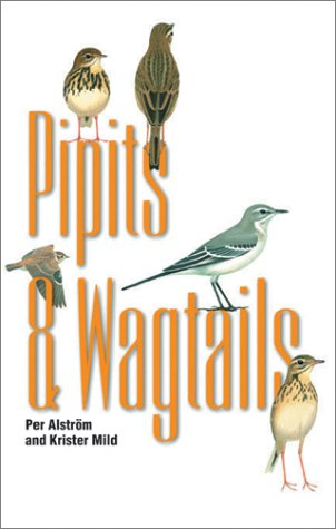 Pipits and Wagtails.