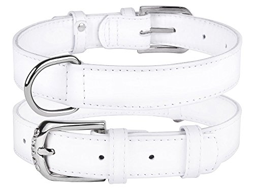 Image of CollarDirect Genuine Leather Dog Collar 12 Colors, Soft Padded Collars for Puppy Small Medium Large, Mint Green Black Pink White Red Blue Purple (White, Size M Neck Fit 12