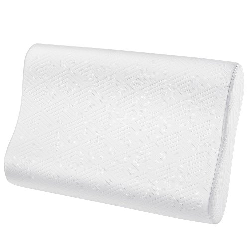 Plemo Memory Foam Contour Pillow