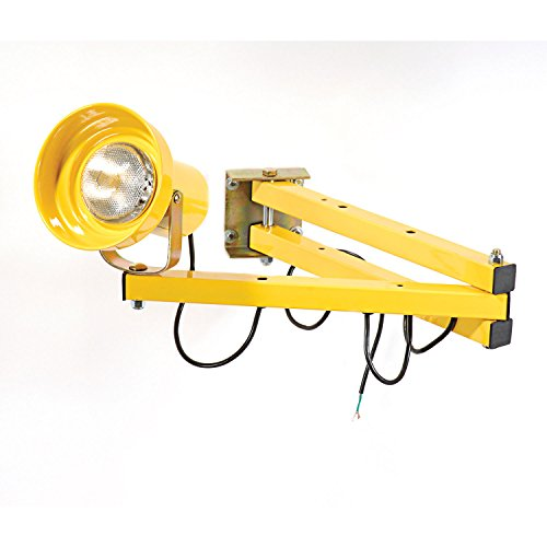 Wesco Double Arm Dock Light with 60'' L Reach by Wesco