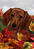 "Dachshund Red Dog Tamara Burnett Fall Leaves Garden Dog Breed Flag 28"" x 40"""