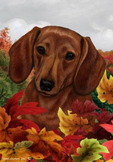 Dog Breed Garden (Dachshund Red Dog Tamara Burnett Fall Leaves Garden Dog Breed Flag 28'' x 40'')