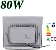 20W 30W 50W 80W Blanco Frío & Blanco Cálido Luz Proyector LED Foco ...
