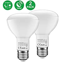 2-Pack Minger 10W BR30 Radar Motion Sensor LED Bulb Light