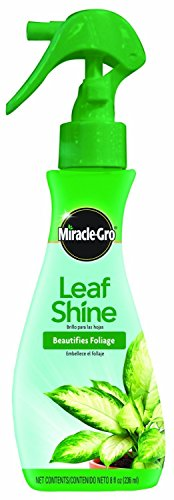 (Miracle Gro Leaf Shine Ready To Use)