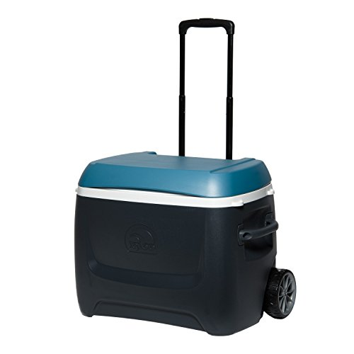 Igloo MaxCold Island Breeze 50 Qt Roller Cooler, Jet Carbon/Ice Blue/White