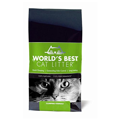 12 Best Cat Litter Brands (Clumping & Non-Clumping) | UK