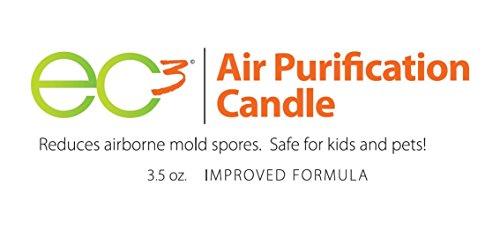 Buy mold remediation companies
