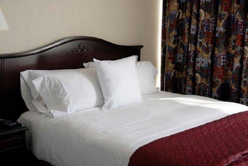 [Deluxe Full Flat Bed Sheet 100% Cotton - White] (Full Flat Sheet)