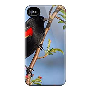 Hot Beautiful Black Bird First Grade Tpu Phone Case For Iphone 4/4s Case Cover