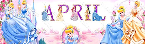 Personalized / Customized Disney Princess Cinderella Name Poster Wall Decor Door Birthday Art Banner