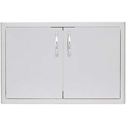 Double Access Door with Paper Towel Dispenser Size: 40'' W by Blaze Grills