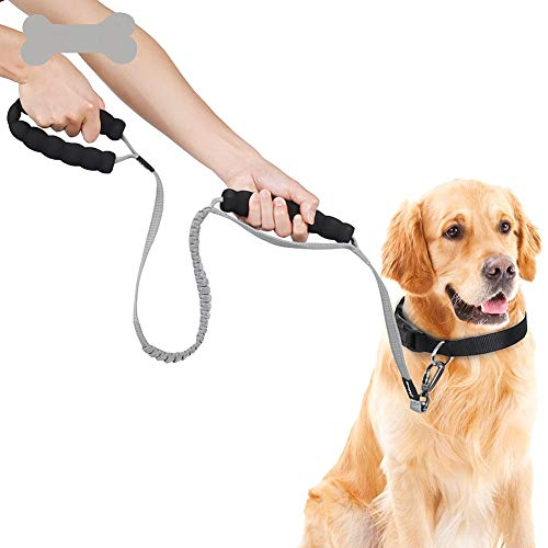 WHZWH Strong Dog Leash,Dog Leash and Collar Set with Soft Handle Explosion-Proof Pressure Reduction Reflective Strip Design Protect Dog Safety,Gray