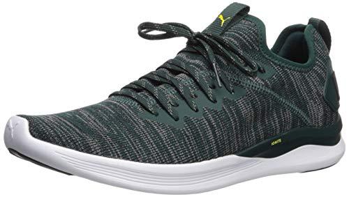 PUMA Ignite Flash Men's Evoknit Sneaker Shoes
