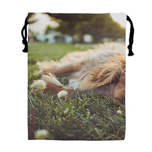 (Luxury Jewelry Pouches Drawstring Gift Favor Bags Candy Bag, 15.75x11.8 Inch-Grass Labrador Dog)