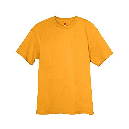 Hanes Short Sleeve 50/50 T-Shirt - 5170, Large, Gold ()