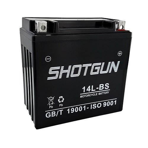 14L Bs Motorcycle Battery - 9