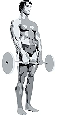 LAMINATED 24x48 Poster: Bodybuilding Posing Strength Weightlifter Muscle Body Arnold Schwarzenegger People Man Person