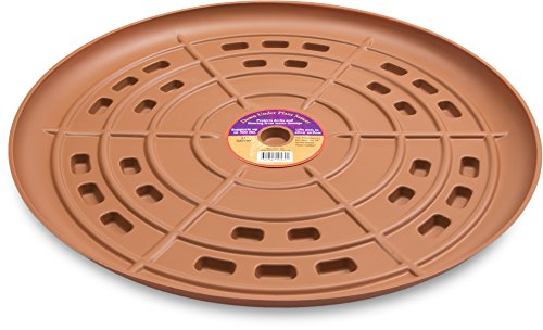 Plant Stand Down Under Plant Caddie 52130 Saucer, 21'', Terra Cotta by Plant Stand