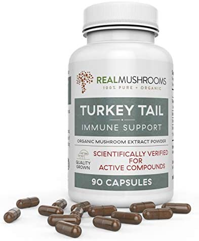 Organic Turkey Tail Mushroom Extract Capsules by Real Mushrooms – Immune Booster – 90 Capsule Supplement