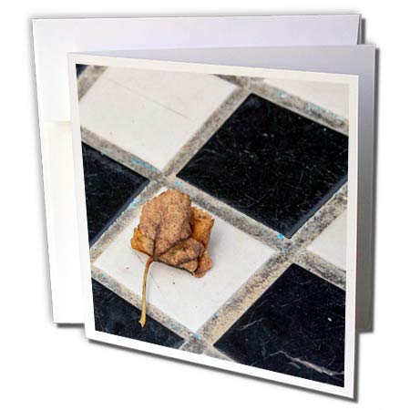 (3dRose RONI Chastain Photography - Leaf on Checker Board - 1 Greeting Card with Envelope (gc_305899_5))