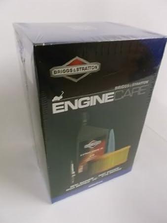 Briggs And Stratton Engine Serive Kit 700 750 750I/C DOV Series ...
