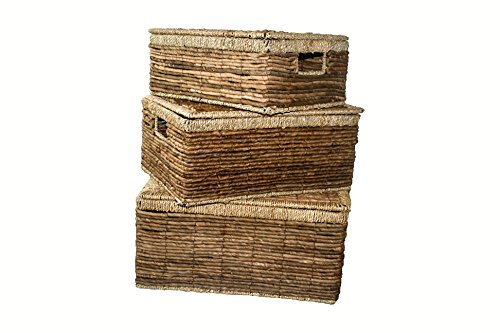 Danielson's Seagrass with Banana Leaf Rope Box (set of 3) (Woven Boxes Rope Set)
