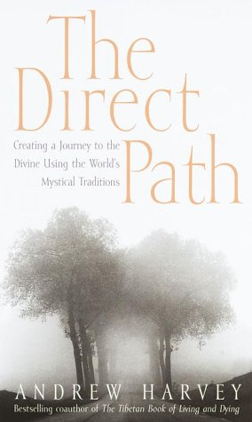 The Direct Path: Creating a Journey to the Divine Using the World's Mystical Traditions (The Direct Path)