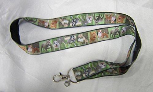(PITBULL TERRIER Dog Breed Ribbon Lanyard/Keychain/Badge Holder w/Metal Charm)