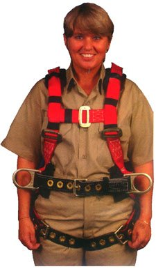 Elk River 65303 Eagle Polyester/Nylon 3 D-Ring Harness with Tongue Buckles, Large