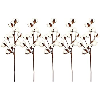 VGIA 5 Pack 10 Balls Per Stem 21 Inch Cotton Stems Farmhouse Style Display Filler - Floral Decoration 5 Pack 10 Balls Per Stem
