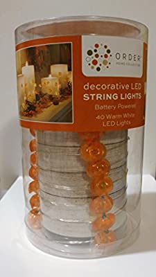 Order Home Collection Decorative LED String Lights Pumpkins (40 Warm White LED Lights) Battery Operated
