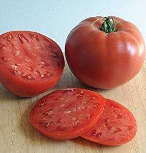 David's Garden Seeds Tomato Beefsteak Rose R21V66 (Red) 100 Organic Heirloom Seeds