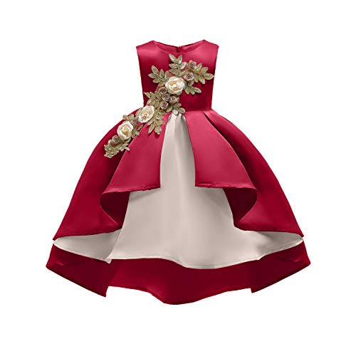 Fairy Cute Party Pageant Prom Vintage Flower Girl Dress Teens Girls Knee Length Sleeveless Wedding Bridal Ball Gown Formal Christmas Day Dress Size 4 5 Years (Red 120)