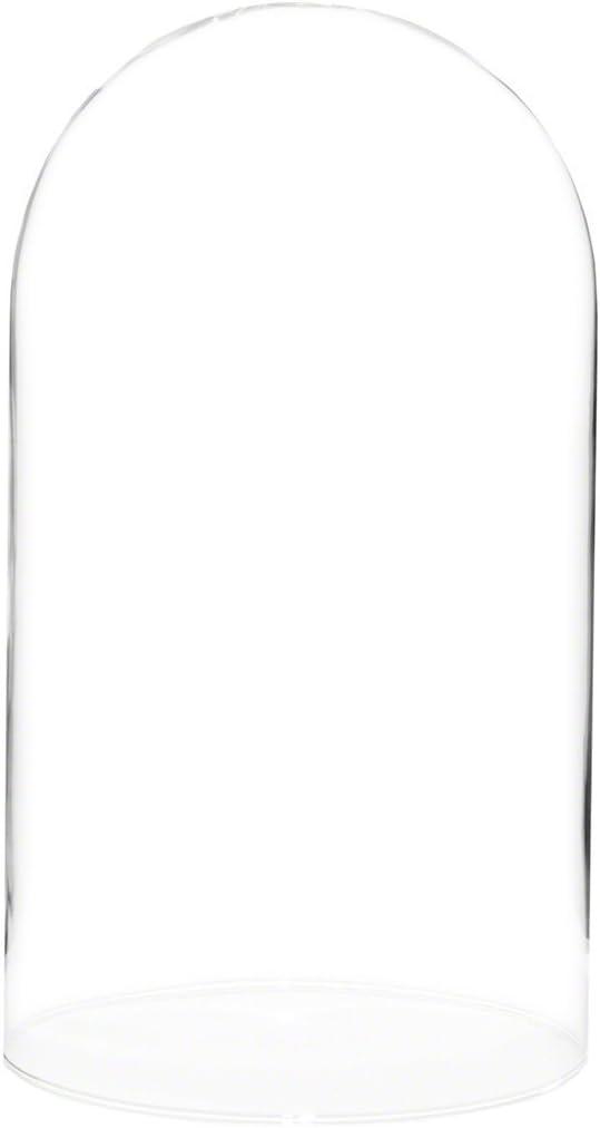 Yanding Bocal en Verre avec Cloche 9 x 20 cm