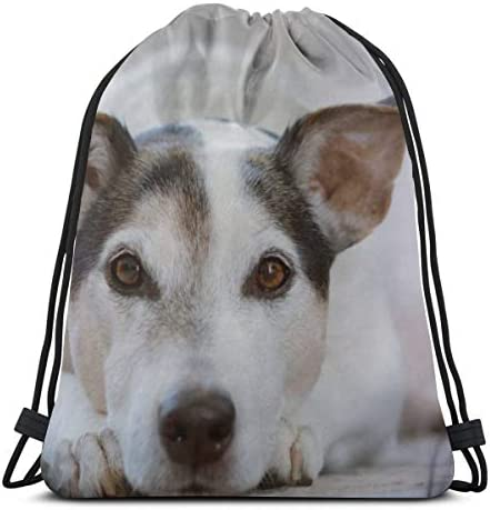 Dog Pet Animal Doggy Sweet Cute Eyes Canine Personalized Sports Pumping Rope Bag Is Suitable For Men And Women Outdoor Travel / Dog Pet Animal Doggy Sweet Cute Eyes Canine Personalized Sports Pumping Rope Bag Is Suitable For Men An...