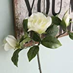 Decorations-Huckus-Artificial-Flowers-2-Branches-Gardenia-Silk-Fake-Flowers-for-Home-Office-Garden-Decor-Fake-Camellia-Artificial-Flowers-Color-type3
