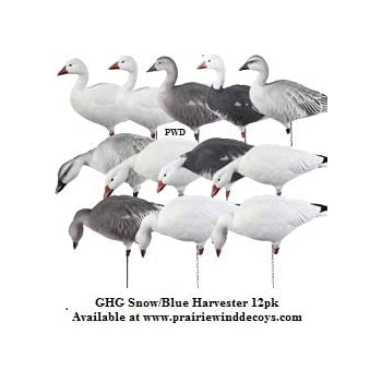 2b6b07f9c8cd8 Avery Greenhead Gear Pro-Grade Goose Decoy,Full Body Snow/Blue/Harvester  Pack,Dozen