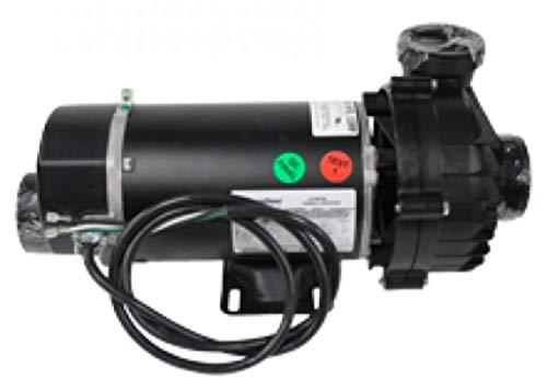 Hot Spring Spas Jet Pump - 1 Hp & 2 Spd -