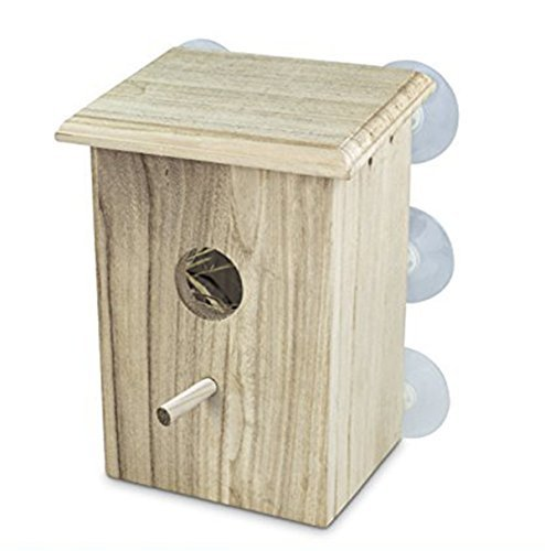 Wooden Bird Nest Box by PetsN'all | Clear View Window Bird Nest for Bird Watching | Heavy-Duty Suction Cups, Angled Roof, Drainage Holes (Building Nest Bird)