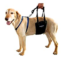 GingerLead Male Support Sling (Large)