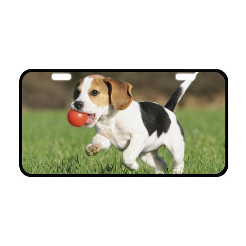 Funny Dog License Plate with Cheap Sale-11.8
