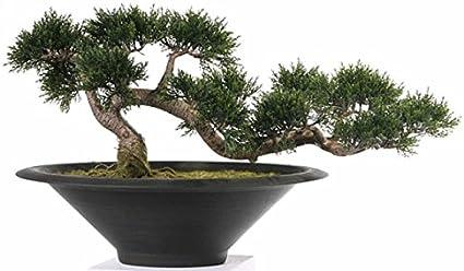 Artificial Cedar Bonsai Tree Set In A Black Planter 35cm High Amazon Co Uk Kitchen Home