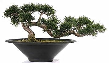 Amazon De Kunstliche Zeder Bonsai Baum In Schwarzem Blumentopf 35
