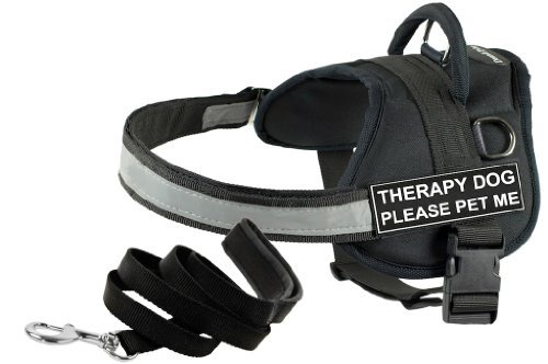 Dean and Tyler Bundle - One ''DT Works'' Harness, Therapy Dog Please Pet Me, Small (25'' - 34'') + One ''Padded Puppy'' Leash, 6 FT Stainless Snap - Black by Dean & Tyler