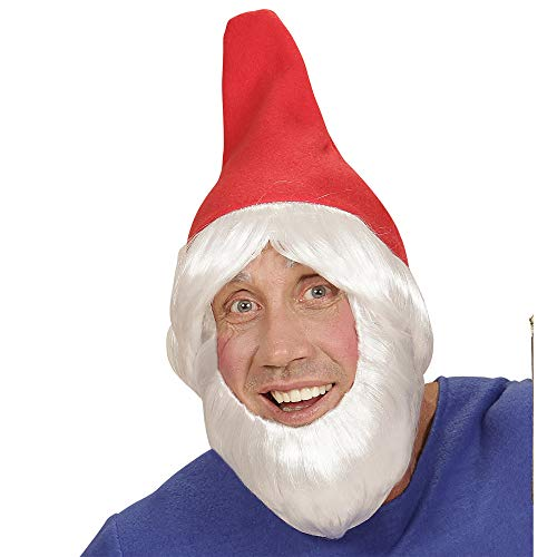 widmann 00825 Garden Gnome Hat with Wig and Beard Adult]()