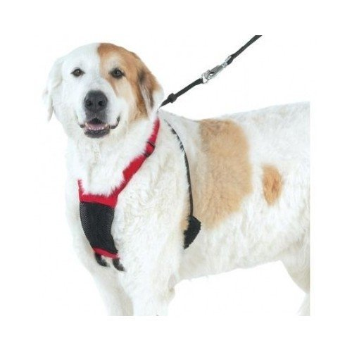 dog mesh harness large - 7