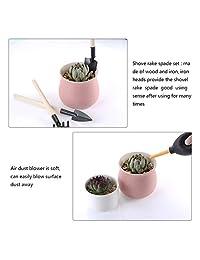 13 piezas Mini jardín herramientas de mano trasplantar herramientas suculentas herramientas en miniatura plantación jardinería juego de herramientas